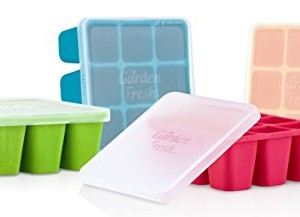 Nuby-Garden-Fresh-Freezer-Tray-with-Lid-Colors-may-vary-0