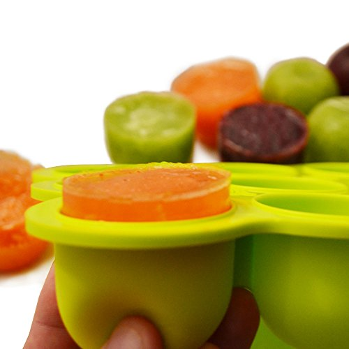 Silicone Baby Food Freezer Tray With Clip On Lid Makes 9
